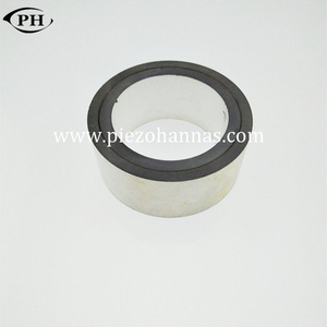 Piezoresistive Pzt Piezo Ring Piezoelectric Transducer Crystals for Ultrasonic cleaner
