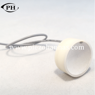 low cost spherical piezoelectric pickup piezo transducer datesheet
