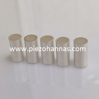Customs Piezo Ceramics Poling Piezo Ceramic Tube Component