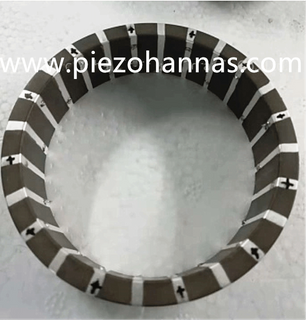 8 Electrode Strips Tangential Piezoelectric Tube for Transducer