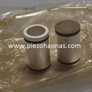 Stock Pzt Ceramic Tube Piezo Ceramics for Acoustic Arrays